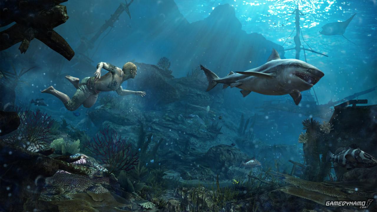 Assassin's Creed IV: Black Flag (PC, Wii U, PS3, PS4, X360, XB1) Guide Screenshots