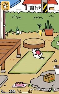 neko-atsume-kitty-collector-cheats-hack-2
