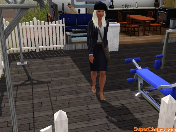 The Sims 3 Ambitions Guide_all video game